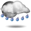 Forecast: Unsettled, precipitation later